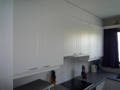 Keuken Renovatie Bovenkasten Met Telescopische Dampkap